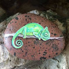 Handpainted Veiled Chameleon originals watercolor by PaintRiver