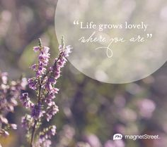 """""""Life grows lovely where you are."""" {Wonderful quote for a wedding program!} 
