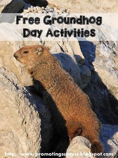 FREE Groundhog Day Classroom Activities - REPIN and visit the blog for tons of FREE teaching ideas and resources. ~Promoting Success for You and Your Students!~