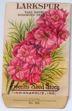 62 New Ideas For Flowers Vintage Tattoo Seed Catalogs Vintage Labels, Vintage Ephemera, Vintage Paper, Vintage Postcards, Vintage Art, Seed Art, Vintage Seed Packets, Seed Packaging, Vintage Gardening
