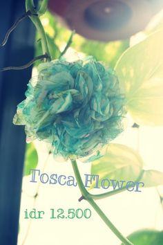 tosca flower