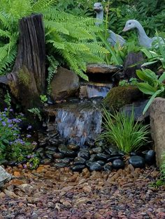 A 'Serenity Waterfall'. One of my favorite small Pondless Waterfalls. Come by Carters Nursery Pond & Patio and see our displays. Backyard, Patio, Outdoor Living, Outdoor Decor, Water Features, Waterfalls, Serenity, Landscaping, New Homes