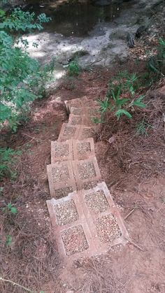 Steps to and from the creek behind our house. Made from cinder blocks, rocks from the garden, and pea gravel. I needed a place to put the rocks and pea gravel. Total project cost: $17.29.