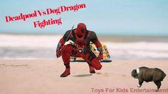 Deadpool Vs Dog Dragon Fighting And SuperHero Hulk Batman Spiderman Danc...