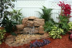 A Change in Latitudes Landscaping