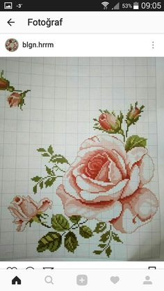 This Pin was discovered by Neb Cross Stitch Bird, Cross Stitch Borders, Cross Stitch Flowers, Modern Cross Stitch, Cross Stitch Designs, Cross Stitching, Cross Stitch Embroidery, Cross Stitch Patterns, Seed Bead Flowers