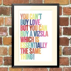 You can't buy love... but love can find you in the shape of a vizsla!