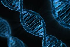 With so much data being produced daily, we need a better ways to efficient to store it all. Enter DNA.