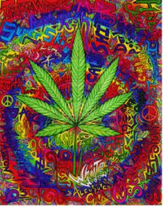 What's YOUR Take on Smoking #Weed? | Stop Frying Your Brain.com #recovery