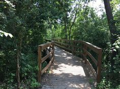 The Best Hiking in Austin, Texas | Austin Insider Blog