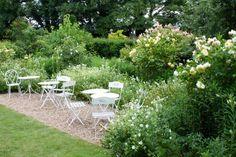 White geraniums, yellow aquilegias and cream roses in abundance in the The Yellow Garden