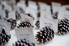 Winter wedding seating cards with frosted pine cones and silver lettering at Willowdale Estate in Topsfield Massachusetts willowdaleestate.com