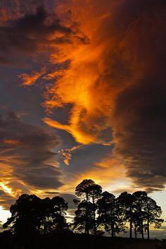 Sunset sky - Rafford, Scotland  (copyright: Andrew McGavin)