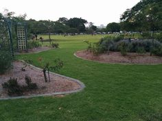 New Farm Park, Brisbane ranked No.23 on TripAdvisor among 468 attractions in Brisbane.