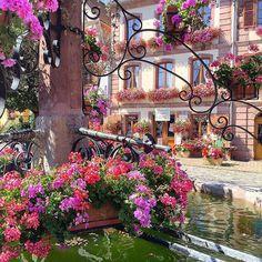 Bergheim, Alsace ~ France   #internationalwomensday