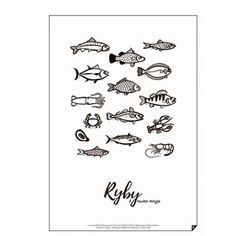 Plakat Ryby - Follygraph - Fabryka Form