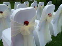 Ivory sashes with real red roses