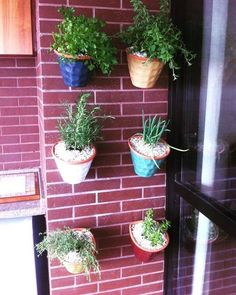 Pessoal aproveitando a foto desta horta vertical quero fazer uma enquete. Escolham qual o proximo post do blog sobre o que gostariam de dicas de como fazer espėcies e cuidados. Jardins embaixo de escadas ou hortas verticais? #blog #dicasdecomofazer #enquete #paisagismo #jardinagem #hortavertical #jardimescadas #mihortasuhorta #horta #sustentabilidade by mihortasuhorta http://ift.tt/1Tpo6zH