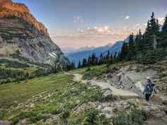 The Highline Trail is one of the most popular hikes in the park, and for good reason. Many Glacier, Glacier Park, Cedar Forest, Camping And Hiking, Backpacking Trails, Hiking Trips, Rv Camping, Big Sky Montana, Park Trails