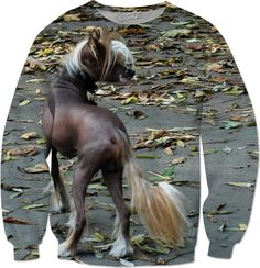 Check out my new product https://www.rageon.com/products/chinese-crested-dog-sweatshirt on RageOn!
