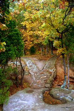 Garden of the Gods - Observation Trail - Shawnee National Forest - Illinois