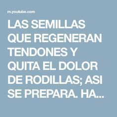 LAS SEMILLAS QUE REGENERAN TENDONES Y QUITA EL DOLOR DE RODILLAS; ASI SE PREPARA. HAZ EL TUYO HOY - YouTube