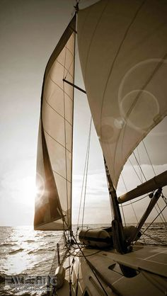 Texdecor Casadeco - Marina 36-MRN25156244 Boot beige Wandbild