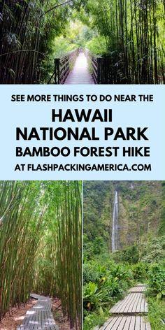 Hawaii Vacation Tips, Hawaii Hikes, Moving To Hawaii, Hawaii Travel Guide, Maui Travel, Hawaii Honeymoon, Oahu Hawaii, Vacation Ideas, Travel Tips