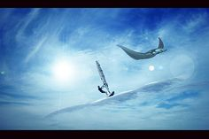SKYWINDSURFER AND MANTA RAY