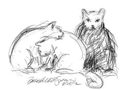 The Creative Cat - Daily Sketch Reprise: Undecided
