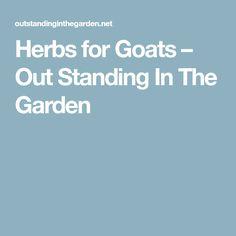 14 Best Herbs & Veggies for Goat Garden images in 2012 | Garden