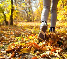 Als je wilt afvallen is wandelen één van de beste manieren om dit voor elkaar te krijgen. Vooral voor beginners is wandelen ideaal, omdat je spieren en gewrichten makkelijk en in een goed tempo kunnen wennen aan deze vorm van