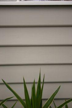 Weather Boards - Dulux Calf Skin and Window Trims - Dulux Whisper White la porta designs: June 2011 Dulux Paint Colours White, Dulux Exterior Paint Colours, Exterior Color Schemes, Exterior Paint Colors For House, Paint Colors For Home, Colour Schemes, Dulux Whisper White, Dulux White, Dulux Feature Wall