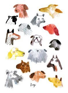 Dogs, cats and rabbits - Lorna Scobie Illustration