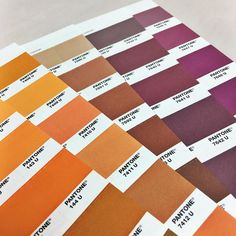 Fall inspired color palette with our brand new #Pantone book #firstdayoffall