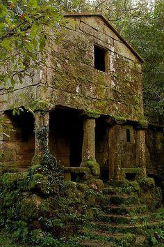 Ruined Ozarks House