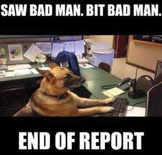 10 Completely Insane Laws Involving Animals Good boy.