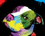 Best Sellers - Dog Art Paintings - Dripful Pitbull by Dean Russo