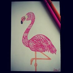 Zentangle flamingo