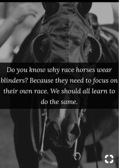Horse people know this. Too bad we take them off at times. - Horses Funny - Funny Horse Meme - - Horse people know this. Too bad we take them off at times. The post Horse people know this. Too bad we take them off at times. appeared first on Gag Dad. Quotable Quotes, True Quotes, Great Quotes, Quotes To Live By, Focus Quotes, Humor Quotes, Horse Meme, Funny Horses, Horse Puns