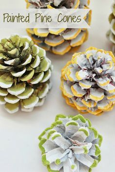 Painted Pine Cones.....