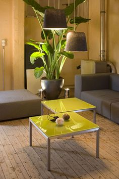Gray Interior, Hostel, Decoration, Green And Grey, Living Spaces, Sweet Home, Architecture, Yellow, Furniture