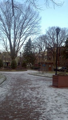 A Vaguely Snowy Fitler Square