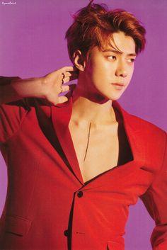Hello handsome~💓 Chanyeol, Sehun Hot, Kyungsoo, Sehun Vivi, K Pop, Xiuchen, Kim Minseok, Kpop Exo, Exo Members