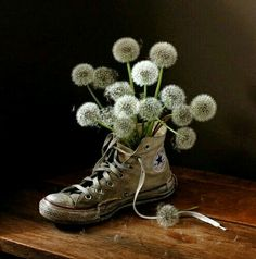 Online digital art gallery of best pictures and photos from portfolios of digital artists. Manually processing and aggregation artworks into the thematic digital art galleries. Dandelion Clock, Dandelion Wish, Dandelion Seeds, Digital Art Gallery, Converse All Star, White Converse, Converse Chuck, Make A Wish, Dandy