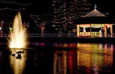 Rhema Park with Christmas lights.  (The Gazebo where my husband proposed to me)