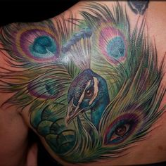 Shoulder Blade Peacock Tattoo