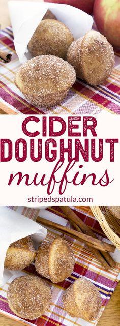 Apple Cider Doughnut Muffins | Fall Recipes | Fall Baking Ideas | #applecider #fallrecipes