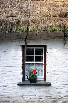 Thatched roof and old kettle turned flower pot...Ireland