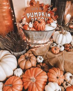 Ohhh I love this time of year! 🧣🧤🎃 Come in from the cold, all snug and cosy. Such a wonderful time of year. Happy October everyone 🎃🧤🍂 🎃 🎃 🎃 thistime october autumn cosy halloween pumpkins candles cosynights mothernature Autumn Cozy, Fall Winter, Autumn Feeling, Autumn Coffee, Halloween Playlist, Cute Fall Wallpaper, Halloween Wallpaper, Wonderful Day, Autumn Aesthetic